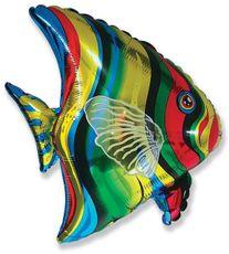 Balón ryba 65 cm